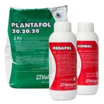 Malagrow kertész csomag (2 ha) 1 csomag